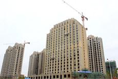 建业壹号城邦项目